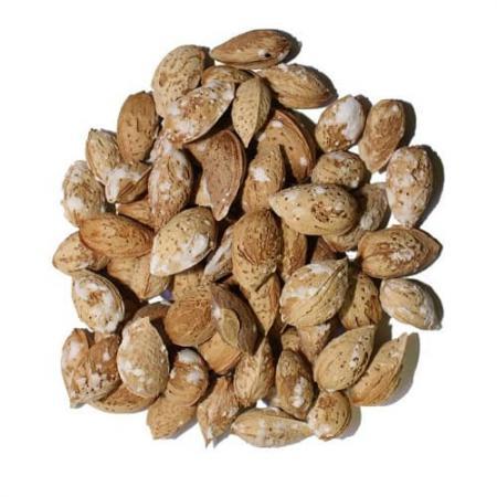 بادام درختی نمکی با پوست ایرانی 250 گرم ایران زمین - بادام درختی نمکی با پوست ایرانی 250 گرم ایران زمین