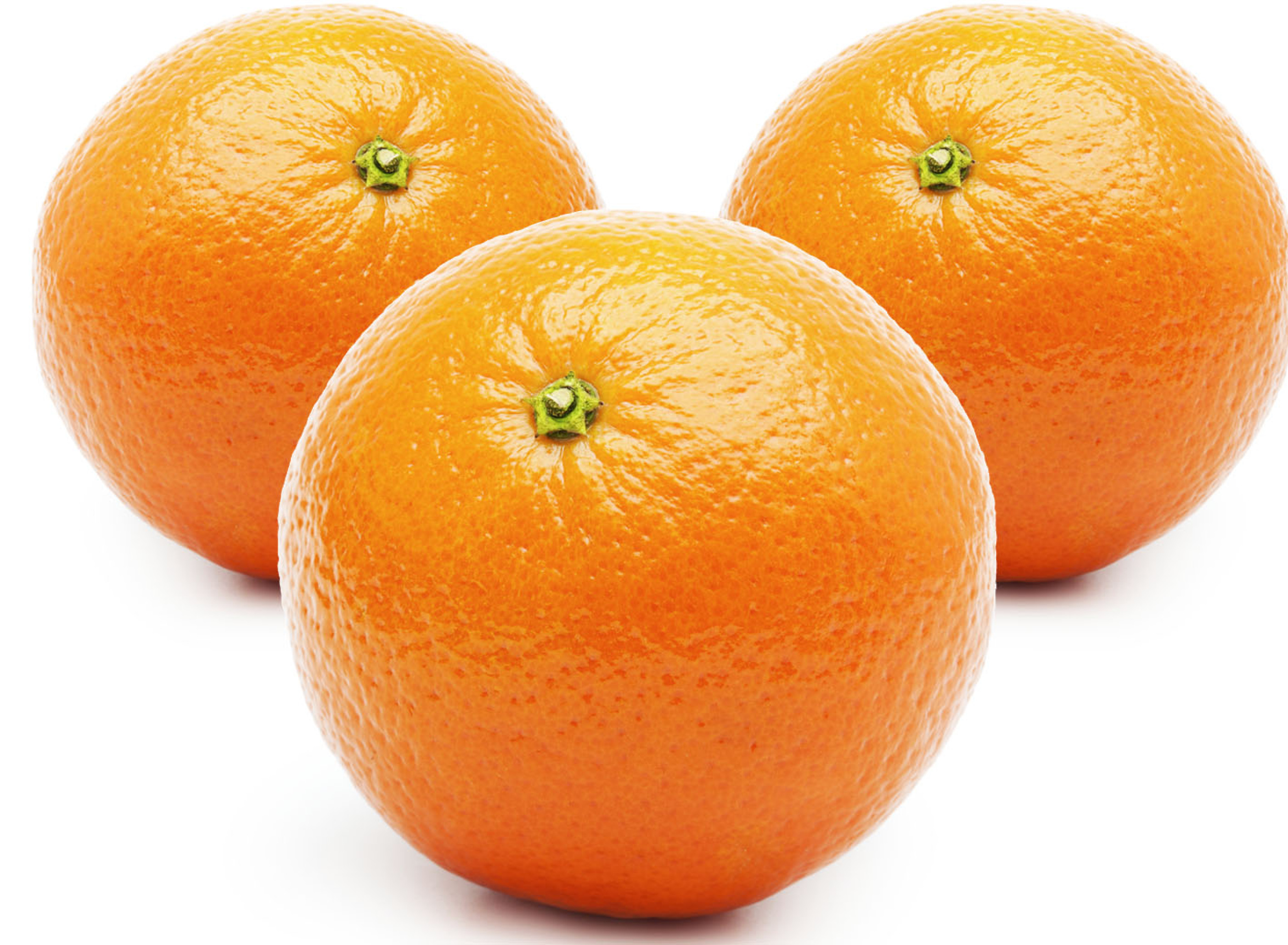 پرتقال تامسون یک کیلویی ایران زمین - پرتقال تامسون یک کیلویی ایران زمین