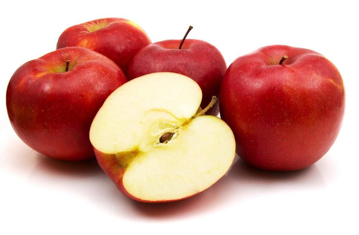 سیب قرمز یک کیلو گرم ایران زمین - سیب قرمز یک کیلو گرم ایران زمین