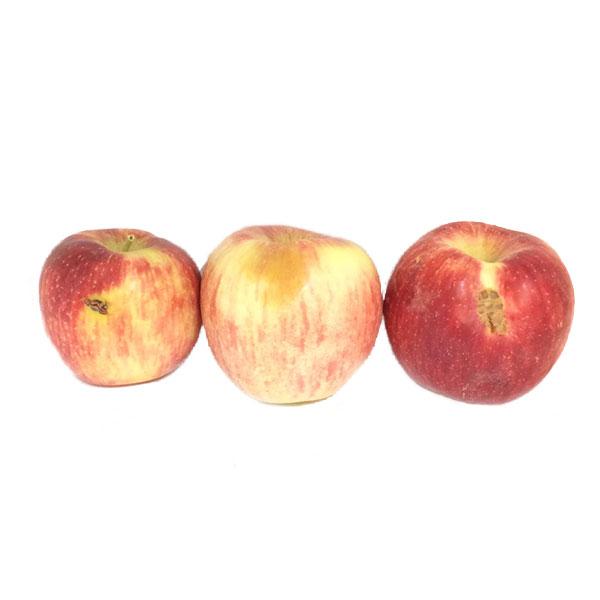 سیب قرمز درجه دو یک کیلو گرم ایران زمین - سیب قرمز درجه دو ایران زمین