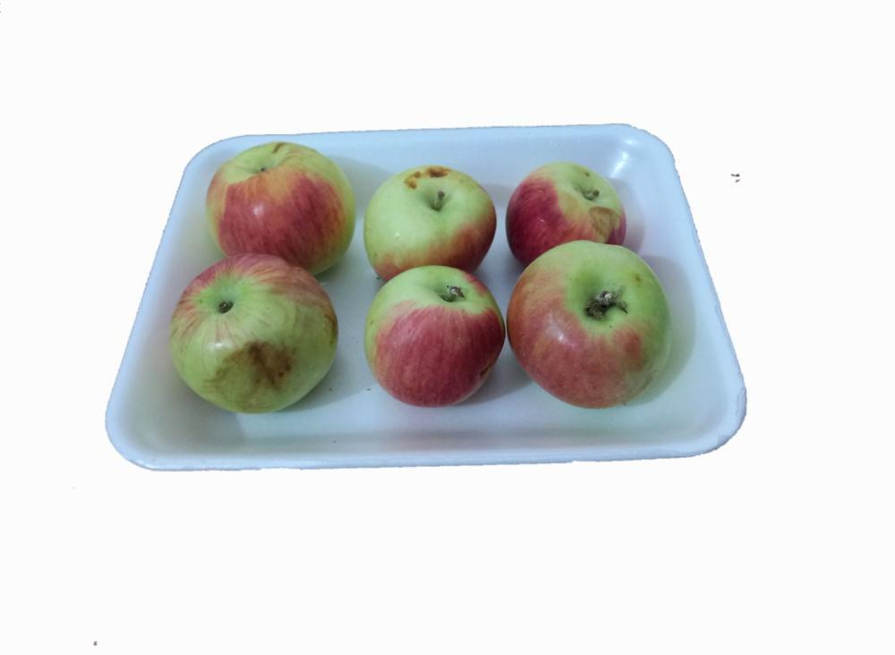 سیب لبنانی یک کیلوگرم درجه دو ایران زمین - سیب لبنانی یک کیلوگرم درجه دو ایران زمین